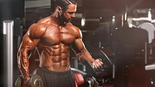 Professional Bodybuilding Training Tips