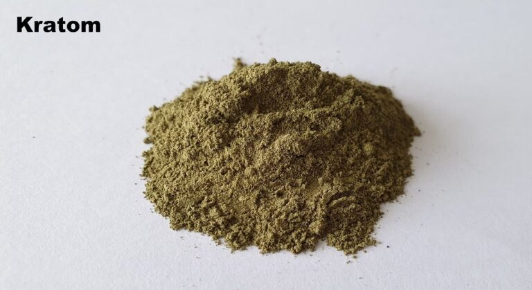 Which Is More Effective – Kratom Powder Or Extract?